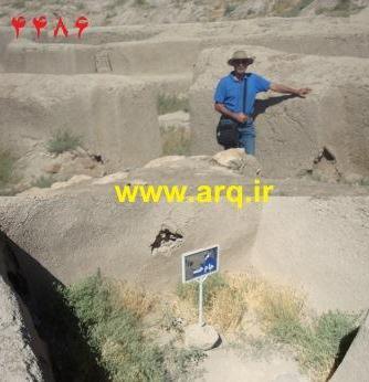 انوش راوید در تپه حسنلو