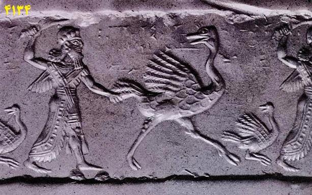 تاریخ مبارزه با حیوان آزاری در ایران